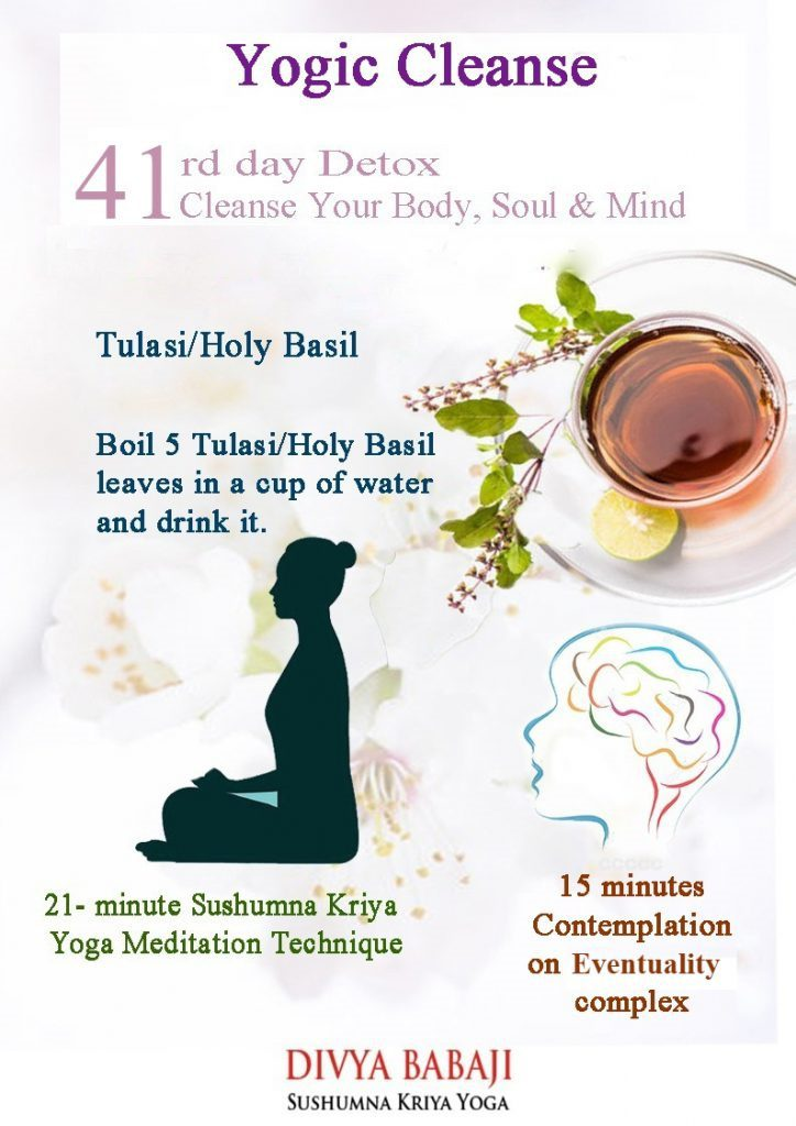 Yogic Cleanse Week 6